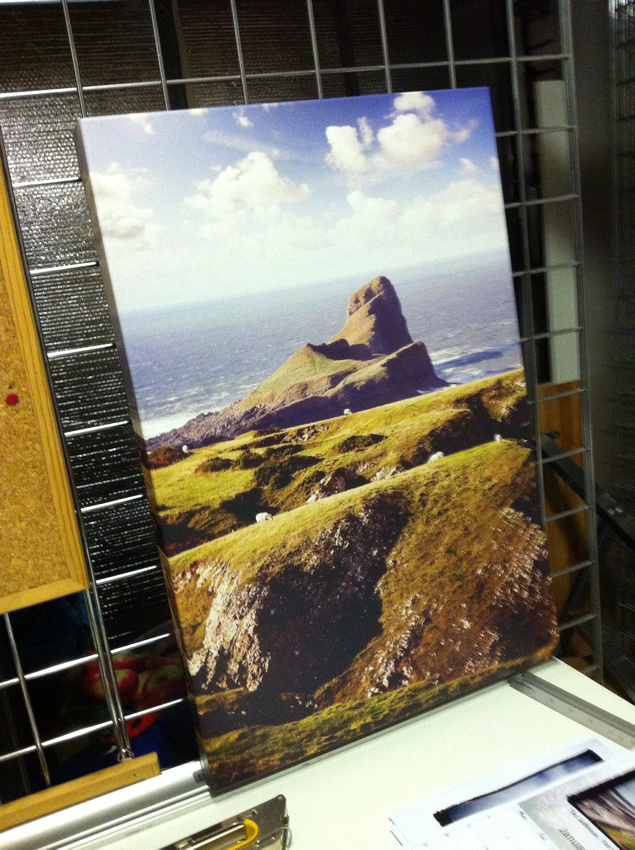 24x16inch worms head canvas. Shop stock clearance - usually £80,  SALE £40